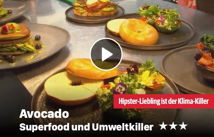 Avocado - Superfood und Umweltkiller