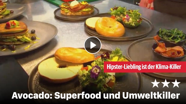 Avocado: Superfood und Umweltkiller
