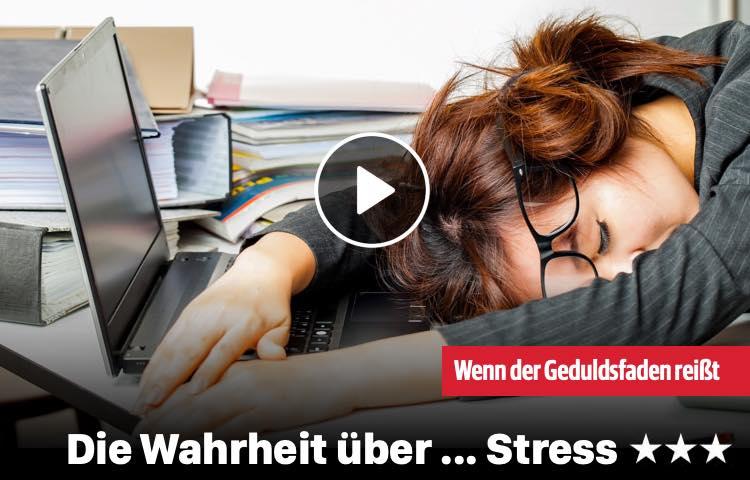 Die Wahrheit über ... Stress
